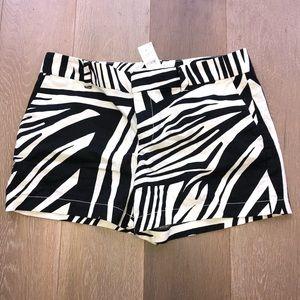 NWT Loft zebra print shorts